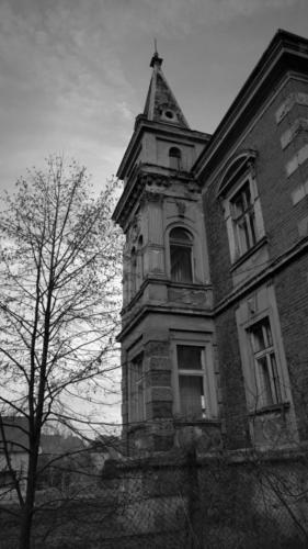 rekonstrukce-a-stavebni-upravy-ruske-vily2